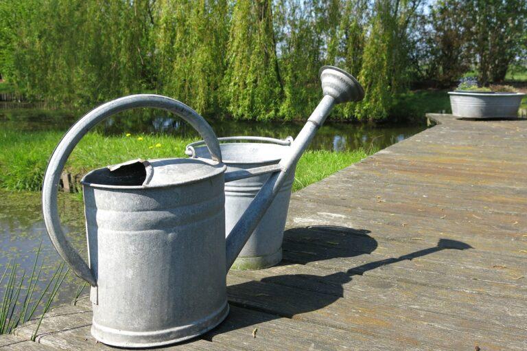 watering can, water, zinc